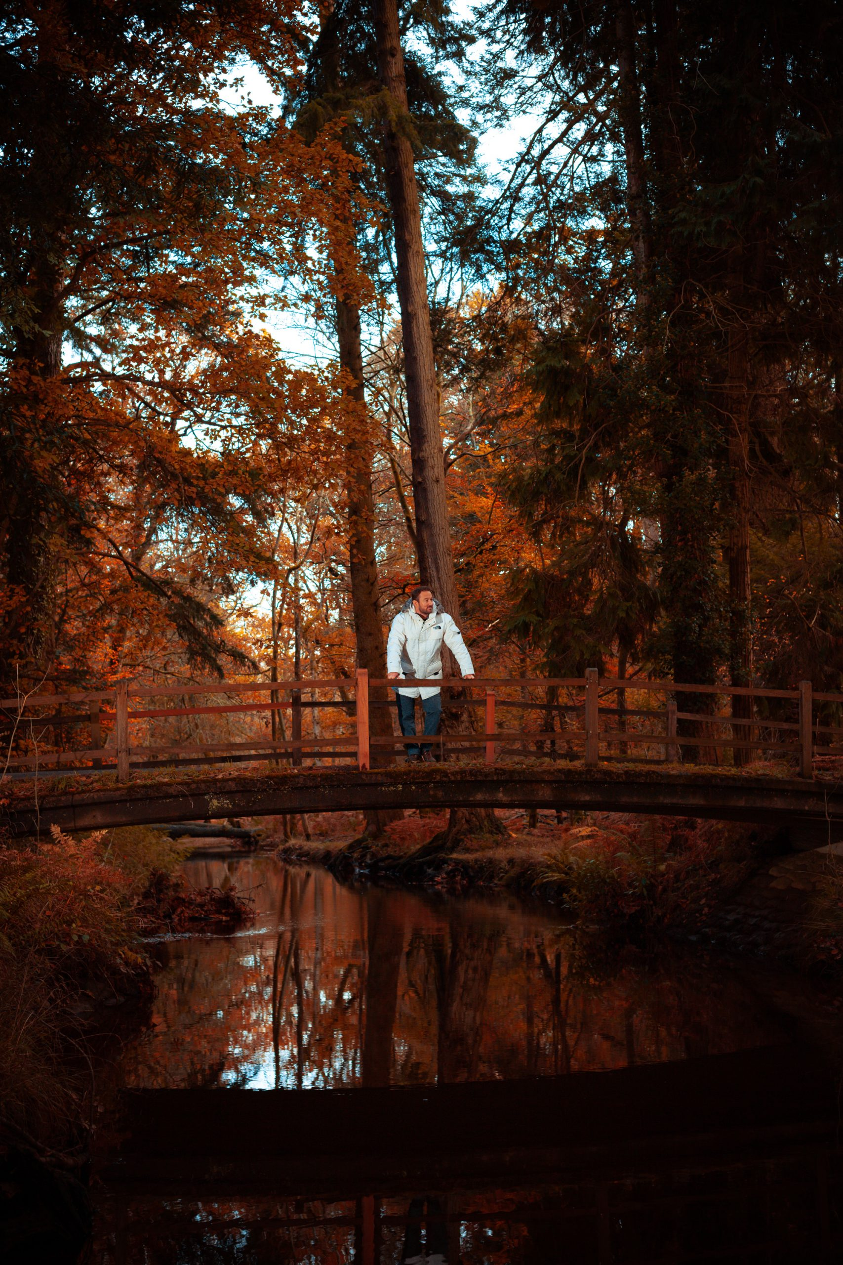 James Rostance standing on a bridge in the New Forest